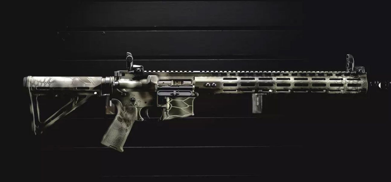 Cerakote AR-15 by Dirty Bird Industries out of Bakersfield, CA.